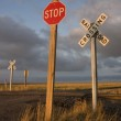 Rural railroad crossing witrh stop sign — Stock Photo #2433917