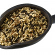 Scoop of wild and brown rice — Stock Photo