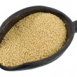 Scoop of amaranth grain — Stock Photo #2434589