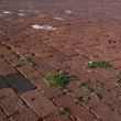 Street brick pavement — Stock Photo