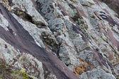 Sandstone rock with lichen background — Stock Photo