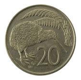 Kivi bird on Nea Zealand coin — Stock Photo