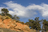 Sandstone cliffs, pine trees in Colorado — Stock Photo