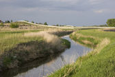 Irrigation ditch, green meadows — Stock Photo