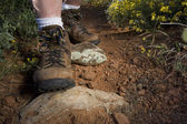 Hiker feet on a mountain trail — Stock Photo