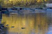 River diversion dam with fall colors — Stock fotografie