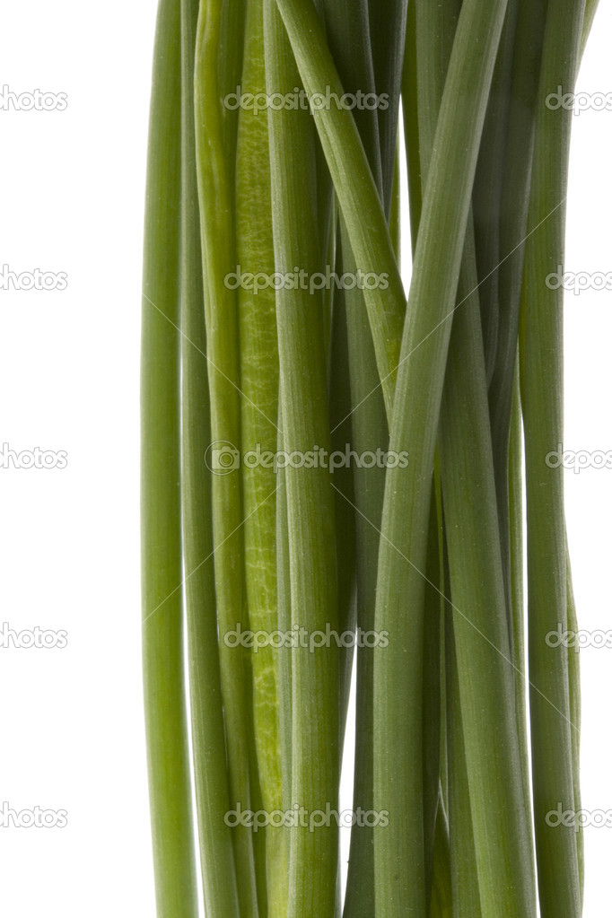 Bunch of green chives, macro shot,  isolated on white — Stock Photo #2433463