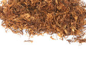 Tobacco — Foto Stock