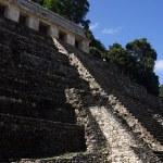 Palenque — Stock Photo #2122403