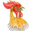 Rooster or cockerel sketch — Stock Photo #2063770
