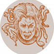 Medusa greek Mythology snakes as hair — Stock Photo