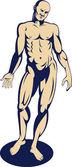 Male human anatomy standing — Stock Photo