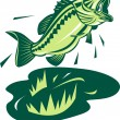 Largemouth bass — Stock Photo