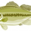 Largemouth bass — Stock Photo #2449416