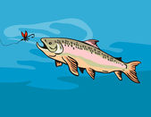 Spotted speckled trout catching bait — Stock Photo