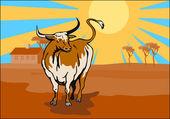Angry raging bull farm house — Stock Photo