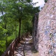 Stock Photo: Wall of old city in wood