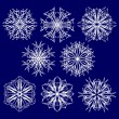Vector snowflakes — Stock Vector #2091181