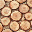 Wood circles with annual rings - Stock Photo