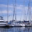 Stock Photo: Luxury yachts moored in harbor