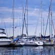 Luxury yachts moored in harbor - Stock Photo