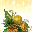 Christmas decoration - green branch - Stock Photo
