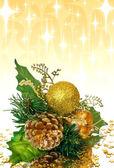 Christmas decoration - green branch — Stock Photo