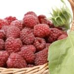 Raspberries — Stock Photo #2422146