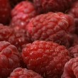 Raspberries — Stock Photo #2460836