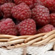 Raspberries — Stock Photo #2460904