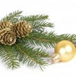 Christmas decoration — Stock Photo #2461868