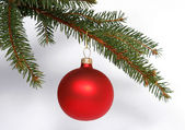 Christmas red glass ball — Stock Photo