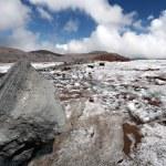 Stone on the glacier moraine in Caucasus — Stock Photo