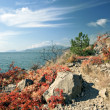 Rocks on the Black sea coast in autumn - Stock Photo