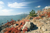Rocks on the Black sea coast in autumn — Stock Photo