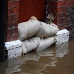 Flood defences — Stock Photo #2466435