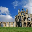 Whitby Abbey — 图库照片