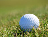 Golfball on grass — Stock Photo
