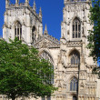 York Minster — Stock Photo #2494256
