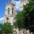 York Minster — Stock Photo #2494314