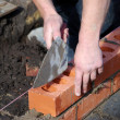 Stock Photo: Laying bricks