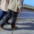 Seniors walking — Stock Photo