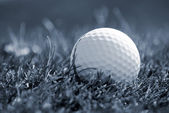 Golfball in grass — Stockfoto