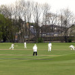 Royalty-Free Stock Photo: Cricket match