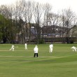 Cricket match — Foto de Stock