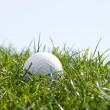 Golf ball in grass — Stock Photo #2566808