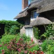 Stock Photo: English cottage garden
