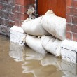 Stock Photo: Flood defences