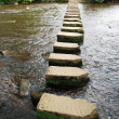 Stepping stones — Stock Photo #2578478
