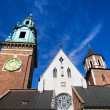 Wawel Cathedral Architecture — Stock Photo